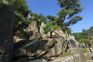 野心作の岩